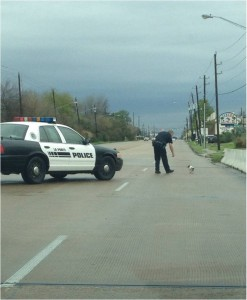 La Porte, Texas - Officer Kyle Jones and Cujo