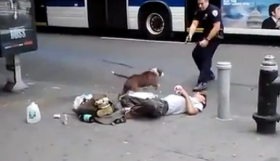 police-shoot-dog-puppycide-bill-buppert-copblock-nypd