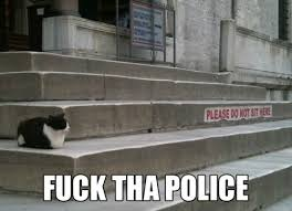 Cat Fuck the Police