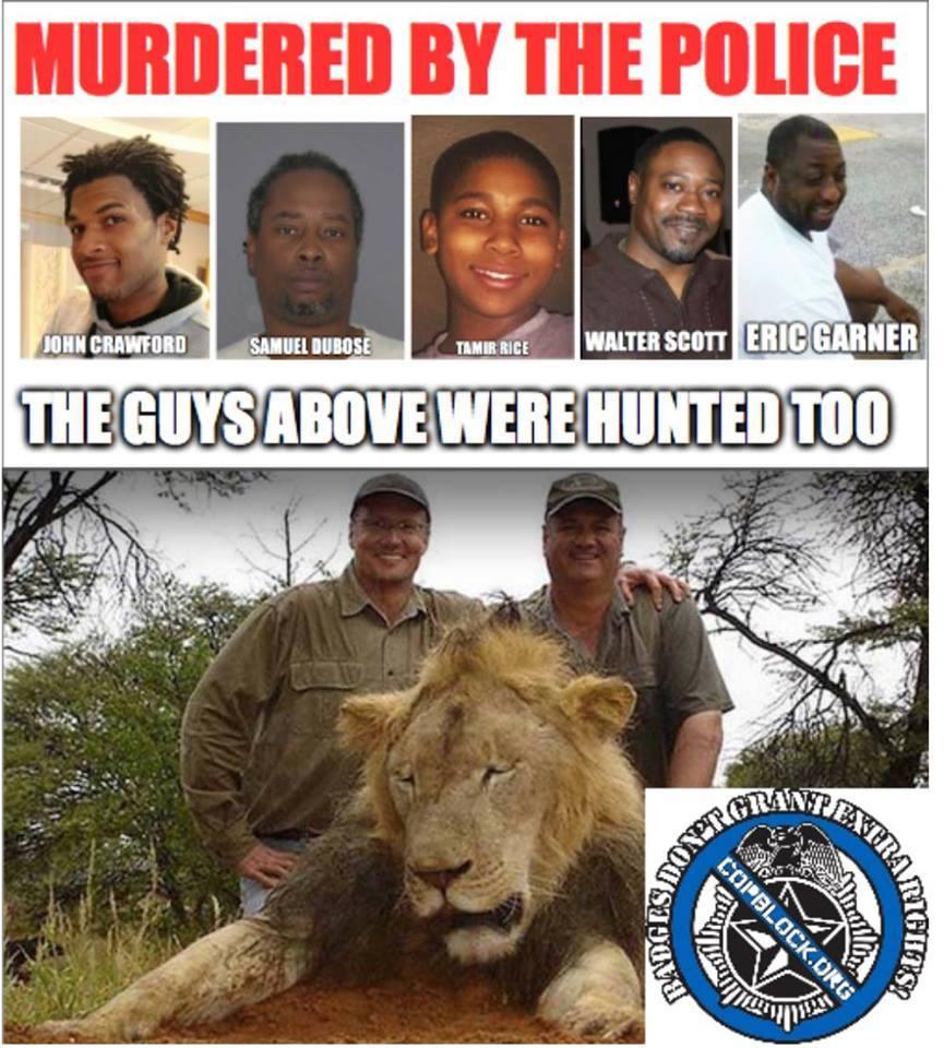 cecil the lion police hunt kill